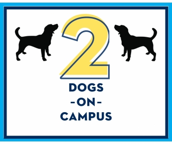 2 dogs on campus