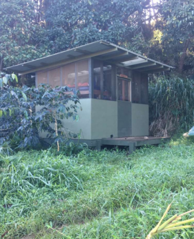 Camping shack in forest in Hawaii