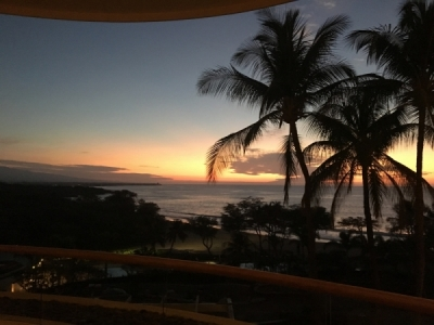Sunset behind palm trees in Hawaii
