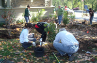 Freshman class planting around Earth Center