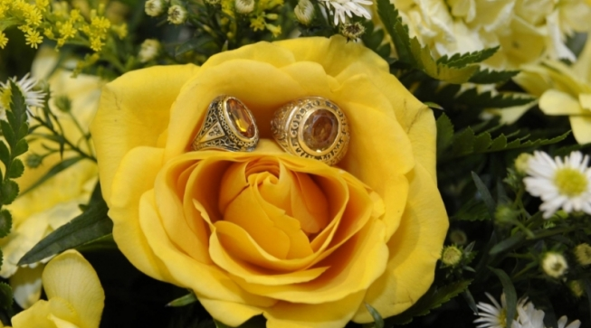 yellow rose with rings in it